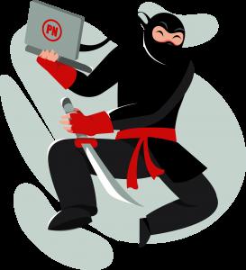 Privacy Ninja